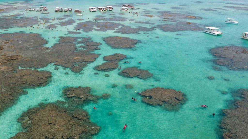 Qual a melhor piscina natural de Maragogi?